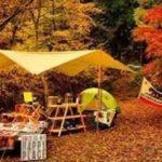子供連れでキャンプを楽しもう!おすすめのスポットを紹介します!